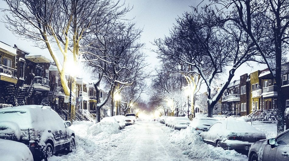 canada-quebec-city-winter-night-snow-tree-lights.jpg